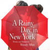 A rainy day in new york-h